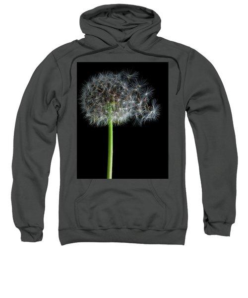 Dandelion 3 Sweatshirt