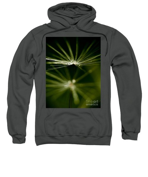 Dandelion Flower With Water Drops  Sweatshirt