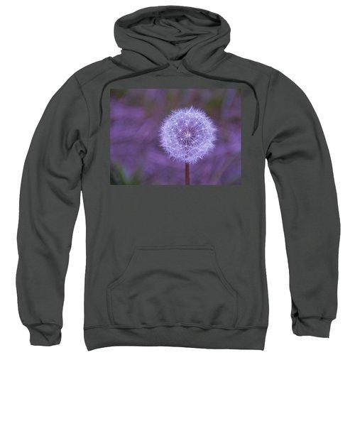 Dandelion Geometry Sweatshirt