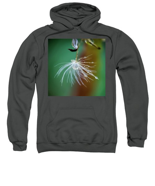Dandelion Water Drop Macro 2 Sweatshirt