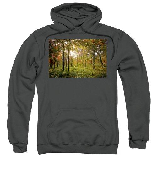 Dawn's Early Light Sweatshirt