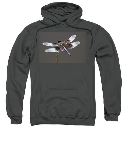 Dazzling Dragonfly Sweatshirt
