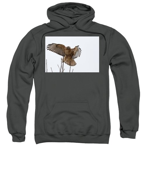 Decisive  Moment Sweatshirt