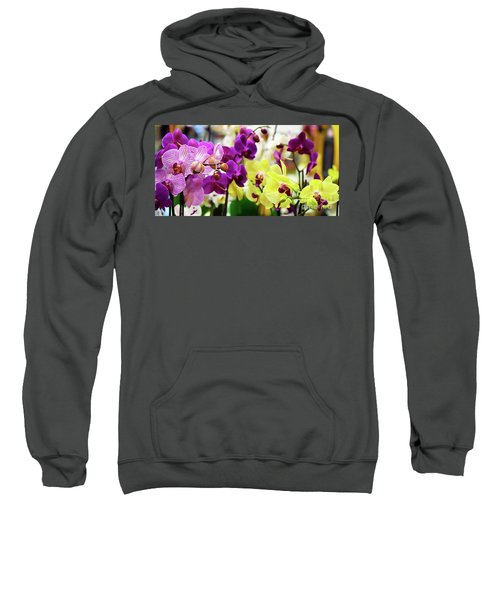Decorative Orchids Still Life B82418 Sweatshirt