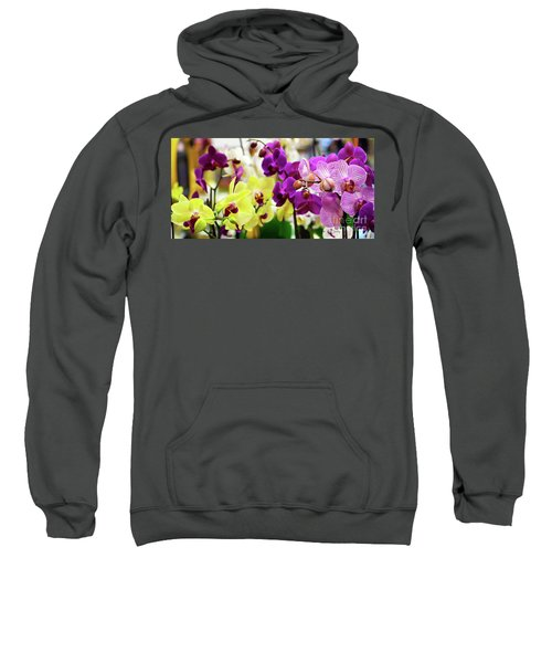 Decorative Orchids Still Life C82418 Sweatshirt