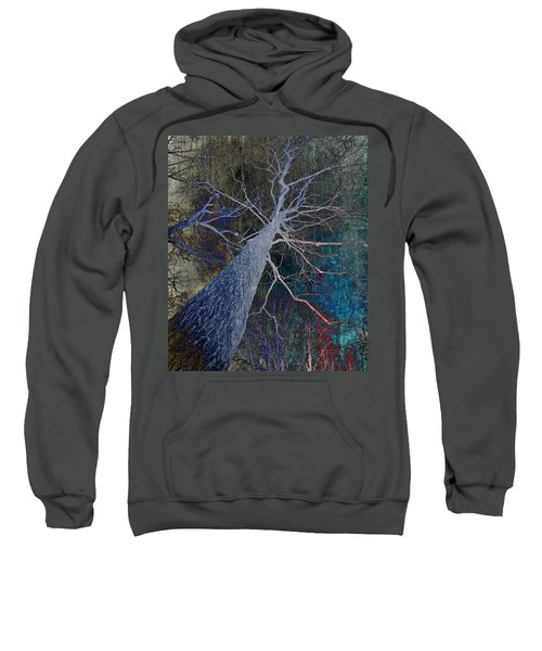 Deep In The Woods Sweatshirt