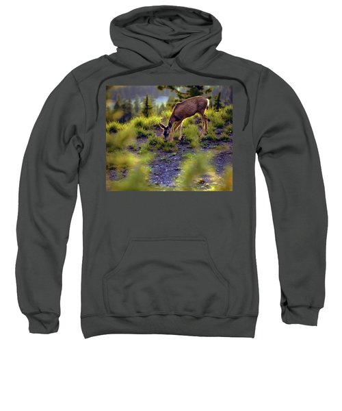 Deer At Crater Lake, Oregon Sweatshirt