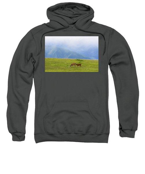 Deer In Browse Sweatshirt