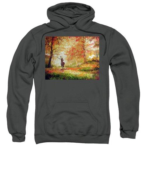 Deer On The Wooden Path Sweatshirt