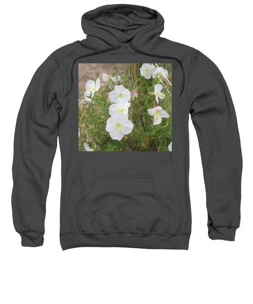 Delicate Desert Bloom - Death Valley Sweatshirt