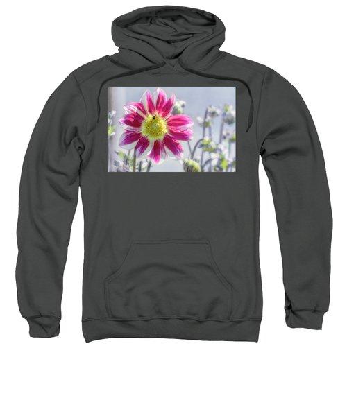 Delicious Dahlia Sweatshirt
