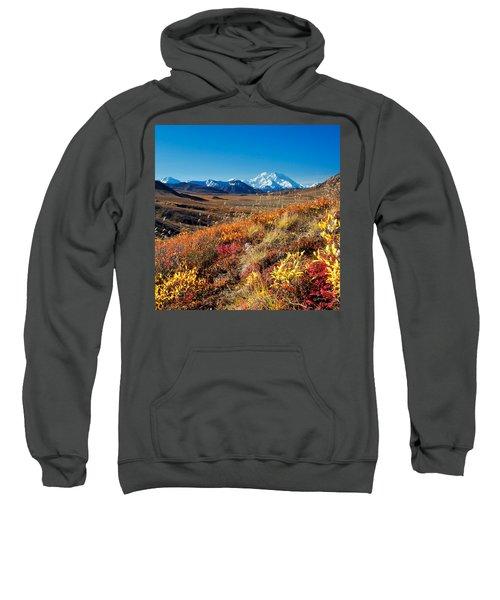 Denalis Perspective Sweatshirt