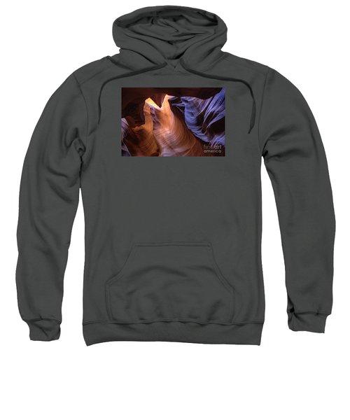 Desert Camel Sweatshirt
