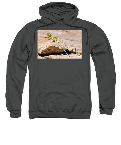 Desert Colors Sweatshirt