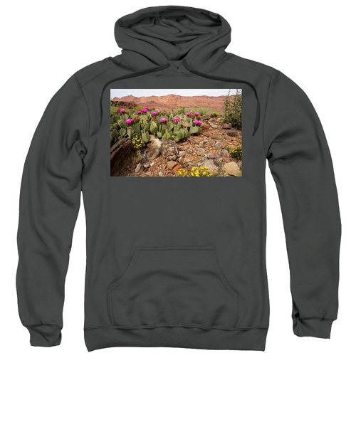 Desert Cactus In Bloom Sweatshirt