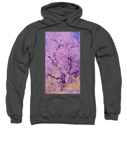 Desert Ironwood  Beauty 2 Sweatshirt