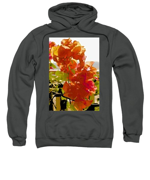 Desert Orange Sweatshirt