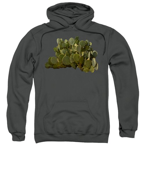 Desert Prickly-pear No6 Sweatshirt by Mark Myhaver