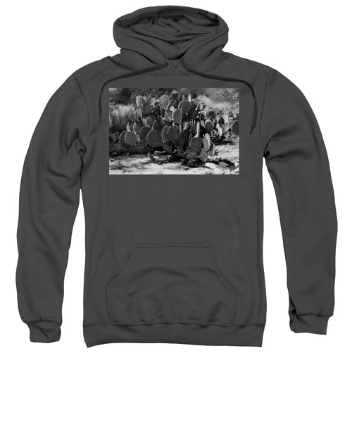 Desert Prickly-pear No7 Sweatshirt