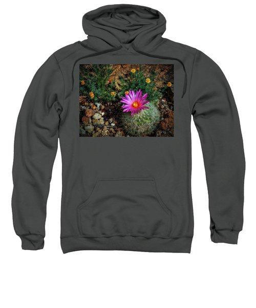 Desert Splash Sweatshirt