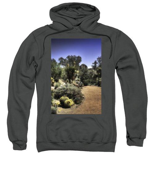 Desert Walkway Sweatshirt