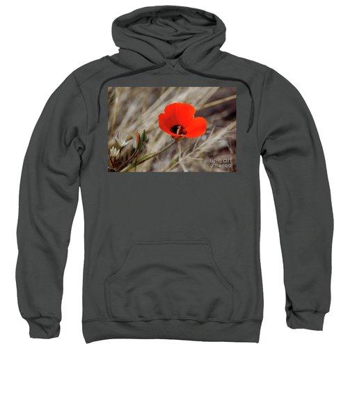 Desert Wildflower Sweatshirt
