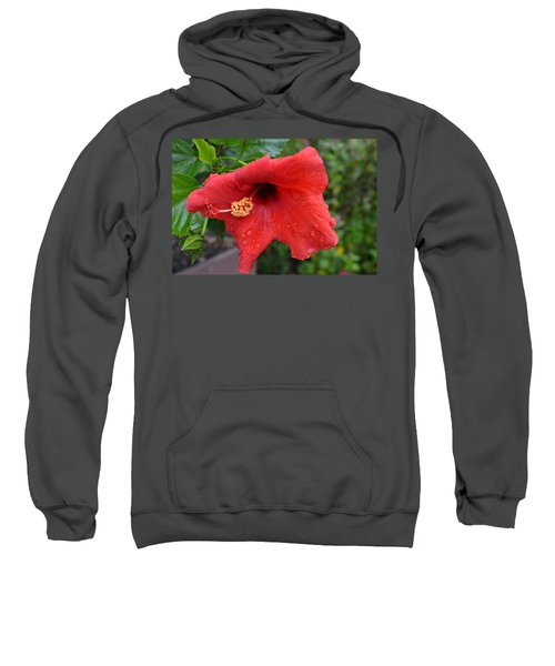 Dew On Flower Sweatshirt