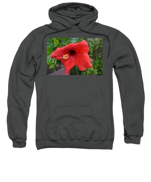 Dew On Flower Sweatshirt