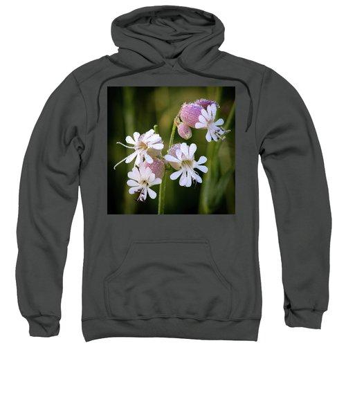 Dewy Morning Sweatshirt