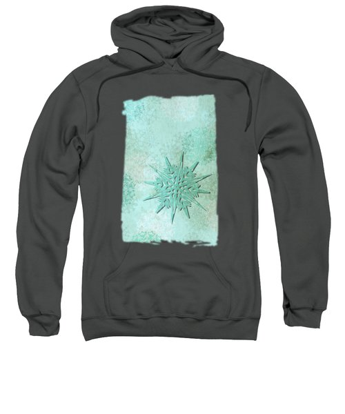Diamond Dust Sweatshirt
