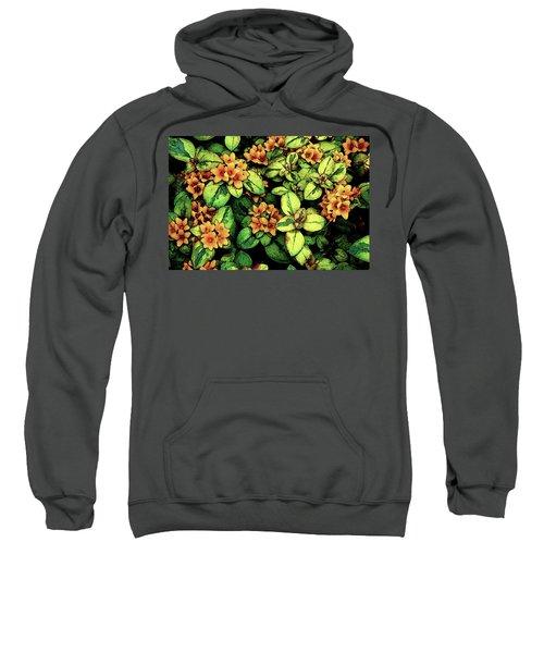 Digital Painting Quilted Garden Flowers 2563 Dp_2 Sweatshirt
