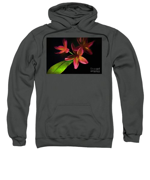 Digitized Sunset Plumerias #2 Sweatshirt