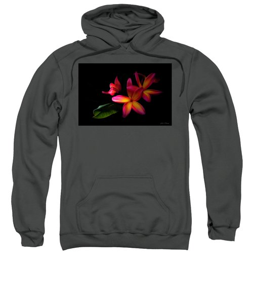 Digitized Sunset Plumerias  Sweatshirt