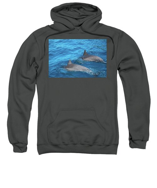 Dive On In Sweatshirt