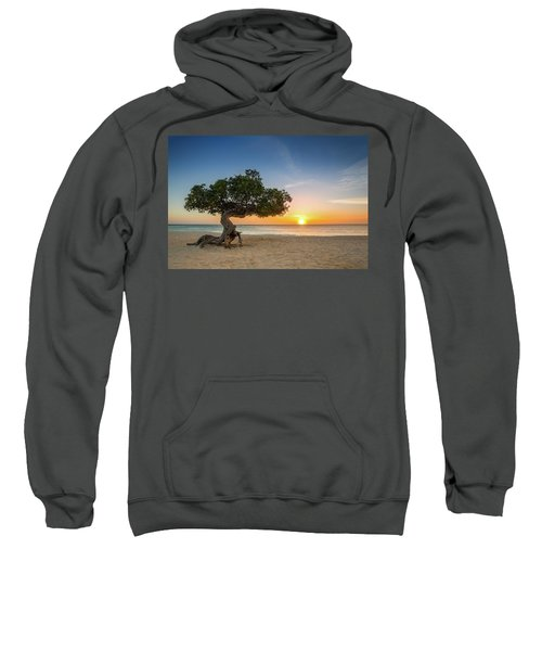 Divi Divi Sweatshirt