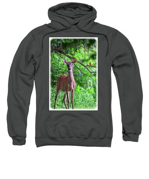 Doe And Cardinal Sweatshirt