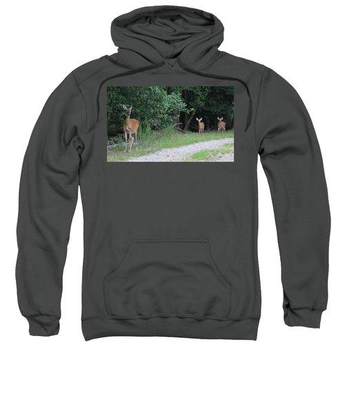 Doe With Twins Sweatshirt