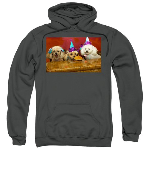 Dog Party Sweatshirt