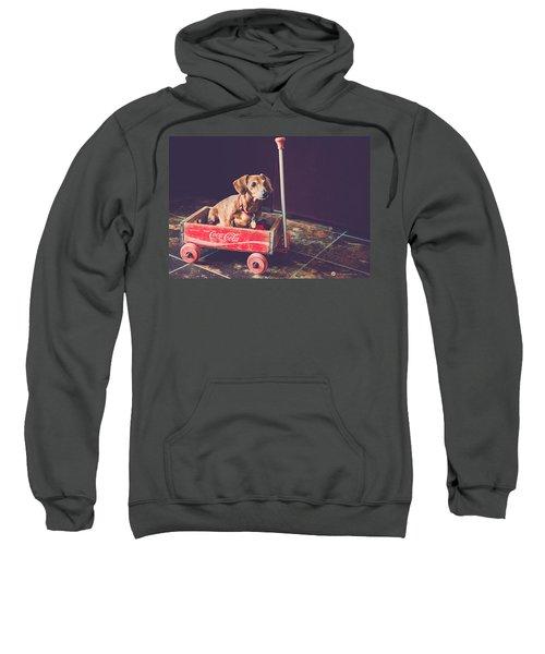 Doggy In A Wagon Sweatshirt