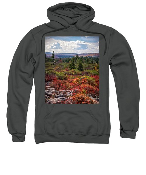 Dolly Sods Wilderness In Autumn 4273 Sweatshirt