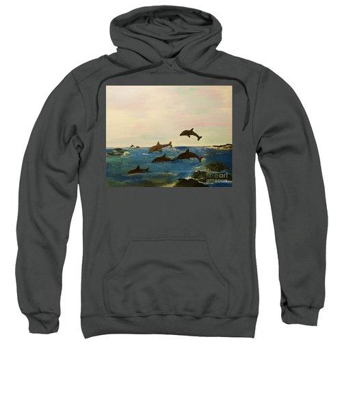 Dolphin Bay Sweatshirt