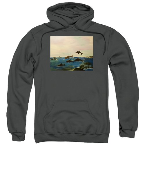 Dolphin Bay Sweatshirt
