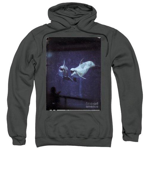 Dolphinspiration Sweatshirt