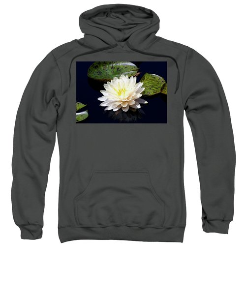 Dotty White Lotus And Lily Pads 0030 Dlw_h_2 Sweatshirt