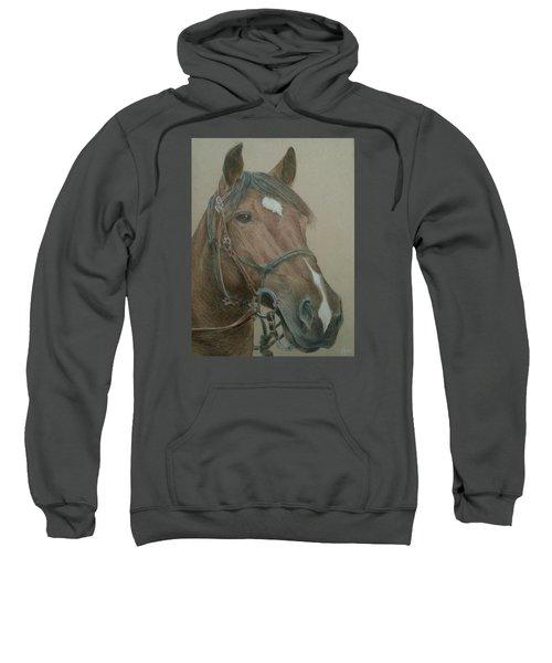 Dozer Sweatshirt