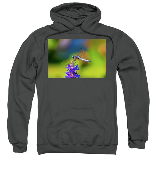 Dragonfly And Purple Flower Sweatshirt