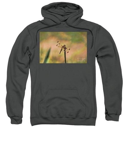 Dragonfly Sweatshirt
