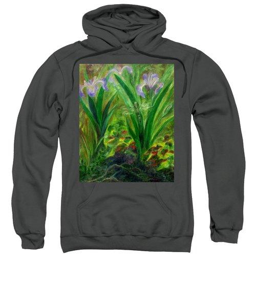 Dragonfly Medicine Sweatshirt