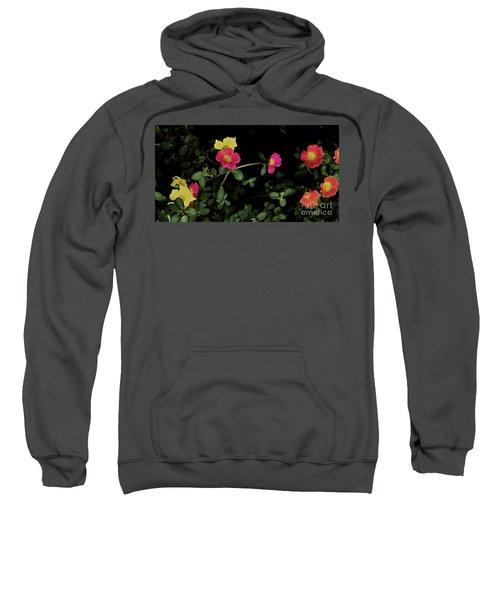 Dramatic Colorful Flowers Sweatshirt