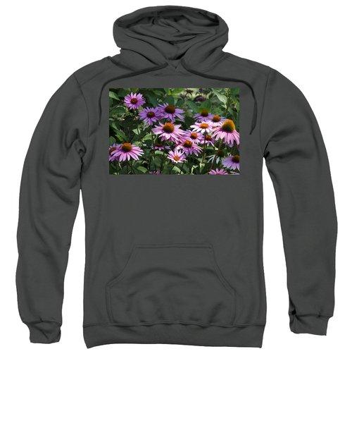 Dramatic Coneflowers Sweatshirt